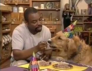 LeVar feeding Roy cake
