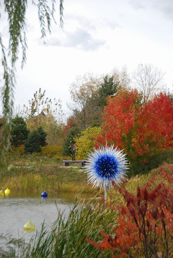 Chihuly.  From Fall Color Weekend Getaway: Meijer Gardens & Sculpture Park