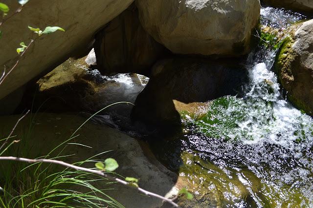 a tough bit of rapids