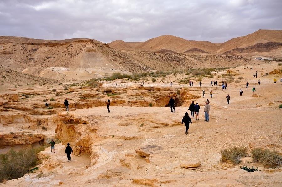 Возле ущелья Эйн Йоркам. Экскурсия гида Светланы Фиалковой в пустыню Негев.