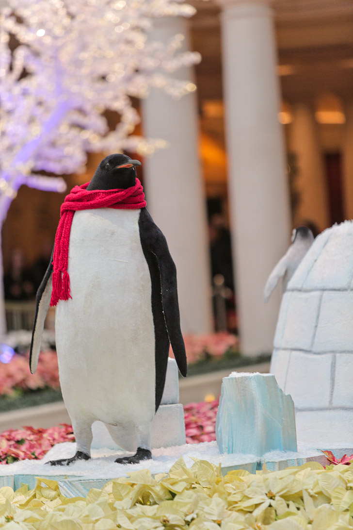 Penguins at the Bellagio Botanical Garden // Las Vegas Christmas.