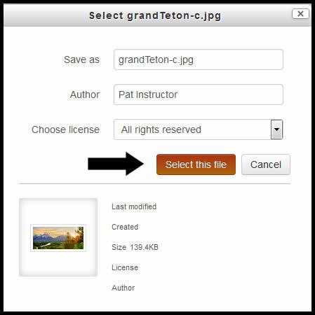 Select this File - Picasa.jpg