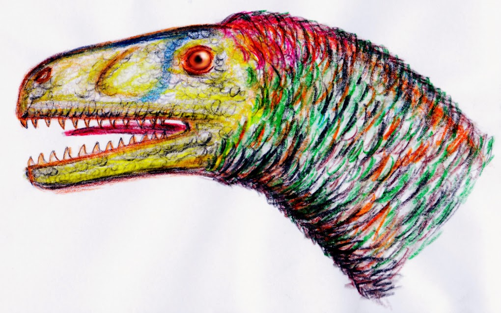 eure dinosaurier-Bilder - Seite 2 Dromeaeosaurus_albertensis