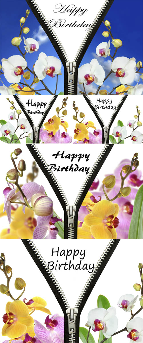 Stock Photo: Original birthday greetings with orchids