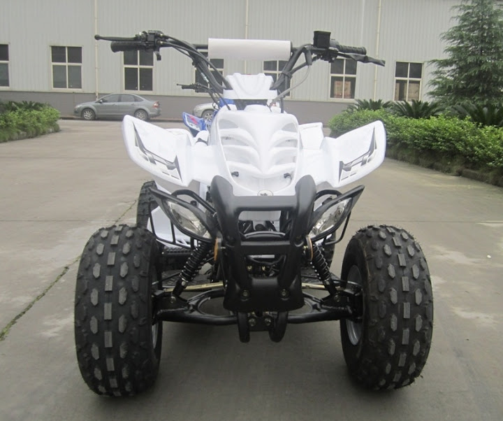 125cc Large Kids Sports Quad Bike ATV Front View 8 inch wheels