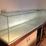 Volglas aquaria