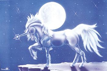 unicorn_aug05%252520%25252817%252529.jpg
