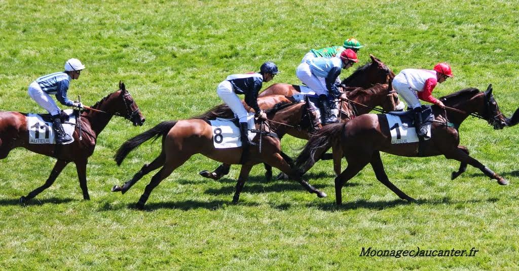 Photos Auteuil le 21-06-2014 IMG_2275