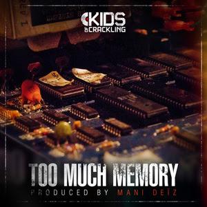 Mani Deïz - Too Much Memory