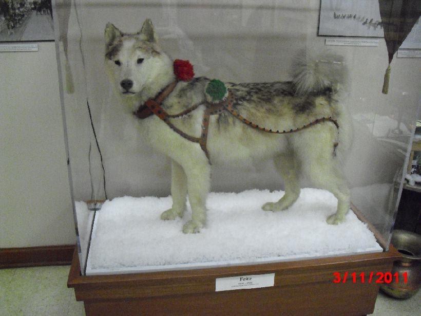 Hundarna i Riga (The Dogs of Riga) (The Hounds of …