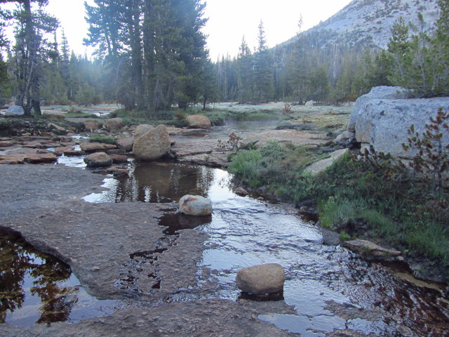 mist on the small pools
