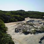 Sandy track near Maroubra (18186)