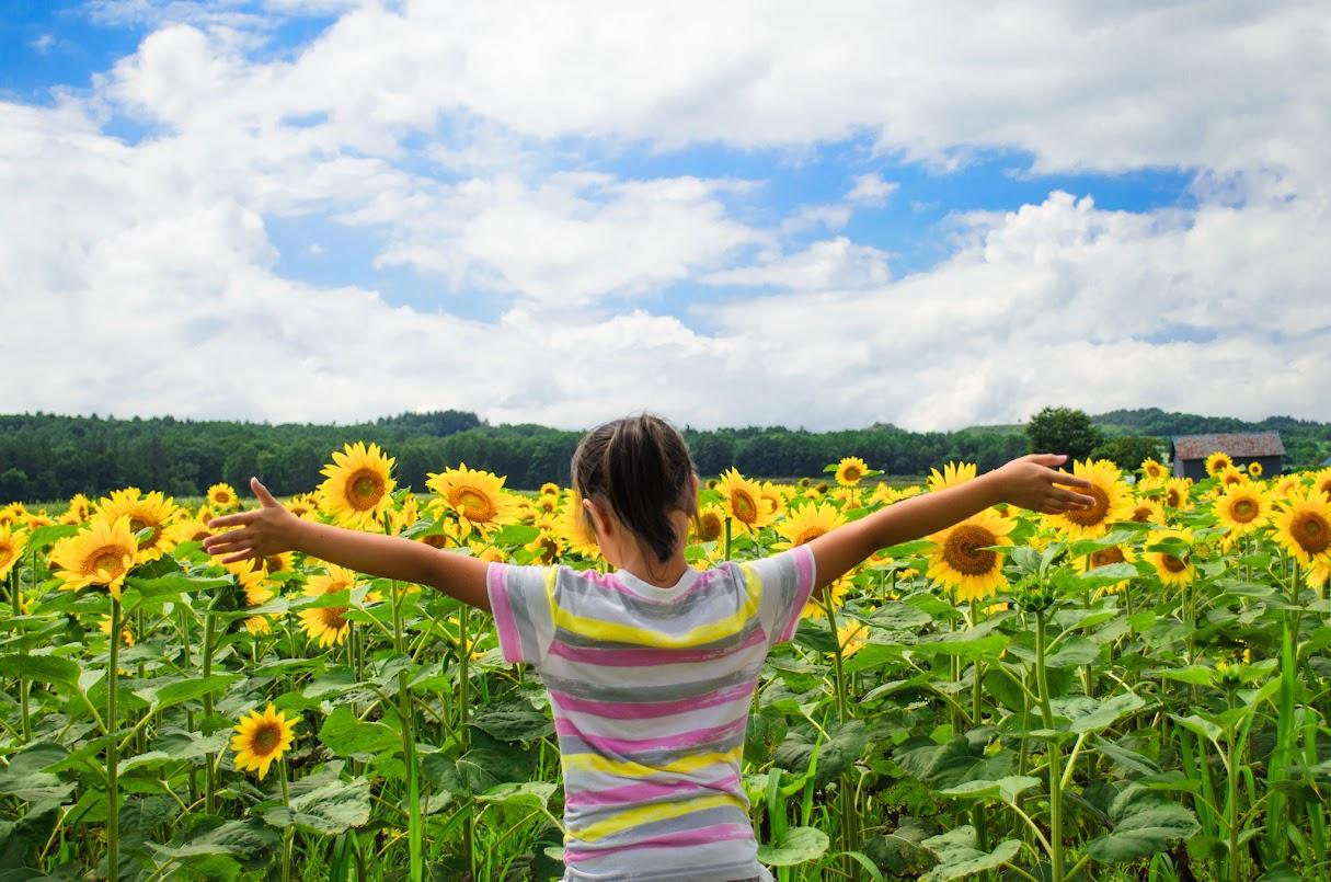 この向日葵のように明るく前を向いて成長してほしい