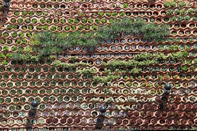 Comparativa entre sistemas constructivos de jardines for Como hacer un jardin vertical con palets