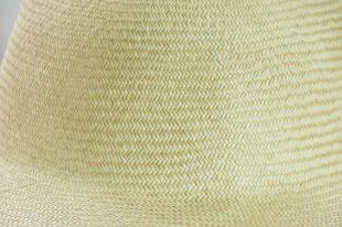 Emulated Panama Detail