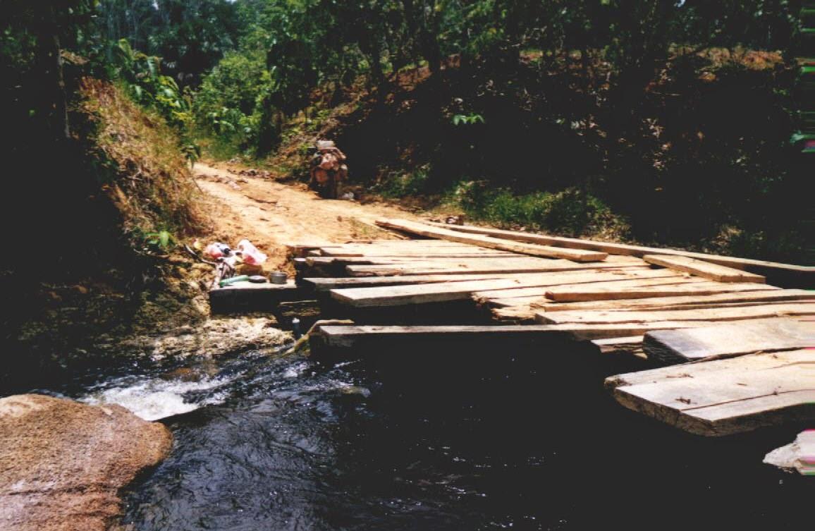 Transamazonica-Brücke