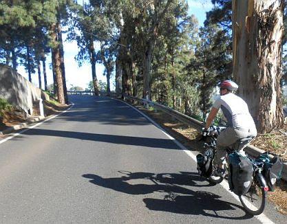 Miri beim Anstieg zum Cruz de Tejeda (1490 m), Gran Canaria