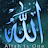 Chadi Bashir avatar image