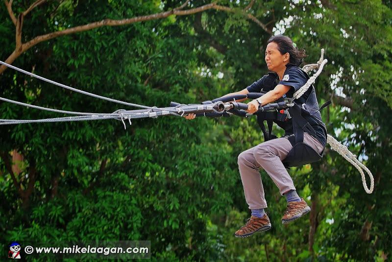 Goliath Swing
