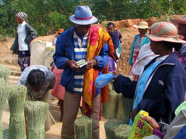 صور من مدغشقر Madagascar 14864988352