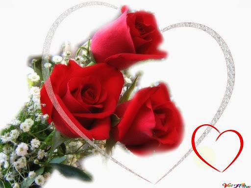 Bó Hoa hồng cho lễ tình nhân