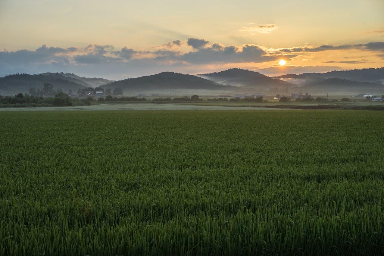 北竜町の穏やかな景色