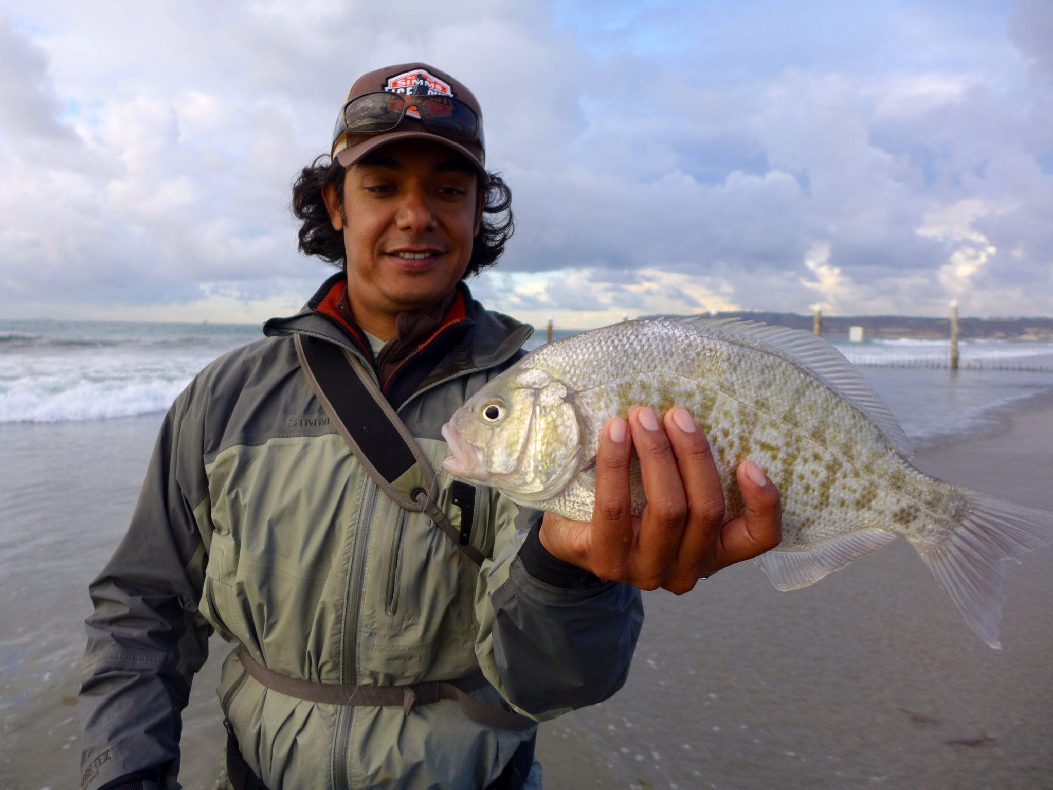 Carp on the fly surf perch for Surf fly fishing