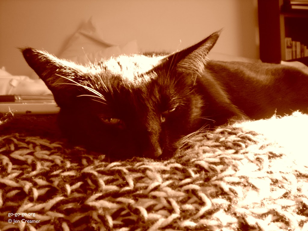 Everyday Photo: Sleepy in Sepia