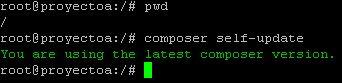 Instalar Composer en Linux