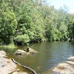 Upstream of the Mooney Mooney Creek crossing (372892)