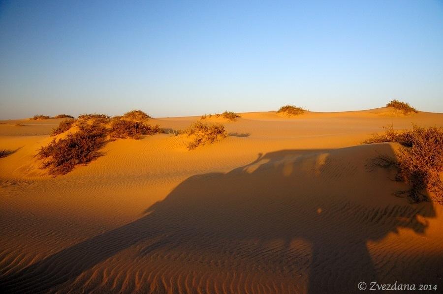 Namibia+2014_021.JPG