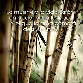 Proverbios 18.21