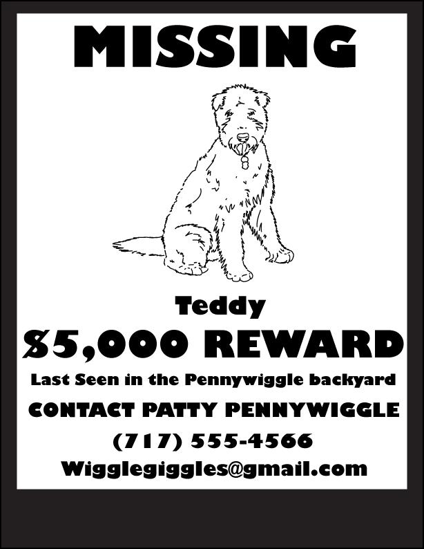 Missing dog poster final