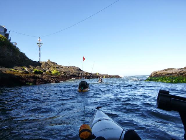 Kayak fishing the oregon rockfish classic orc 7 13 13 for Oregon fishing forum