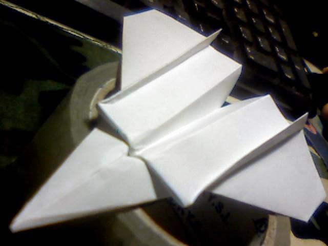 Wing 29