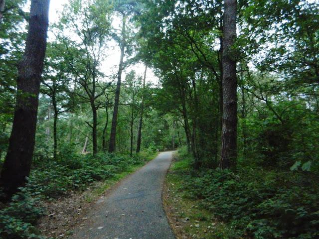 100/110km de la Campine (Kempenlandtocht; NL):1-2/8/2014 Geldrop%252C%25200203-08-13%2520053