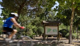Un 'Casa de Campo del Norte' en el antiguo polígono de Valverde con más de 750.000 árboles