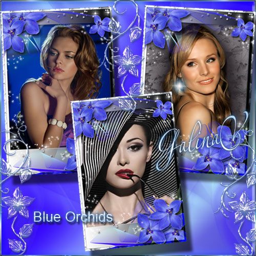 Stylish Flower Frame for Photoshop - Blue Orchids