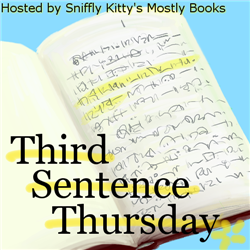 Third Sentence Thursday