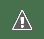 gadea vs antonescu Gâdea vs Antonescu