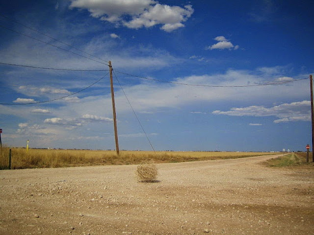 Tumbleweed Rolling By Jez Arnold [CC BY-SA 2.0], via Wikimedia Commons