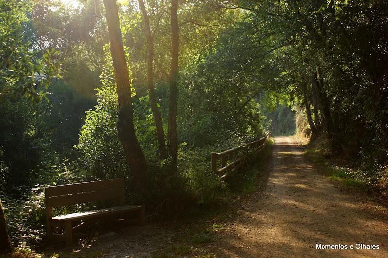 Ruta del ferrocarril, San Tirso de Abres