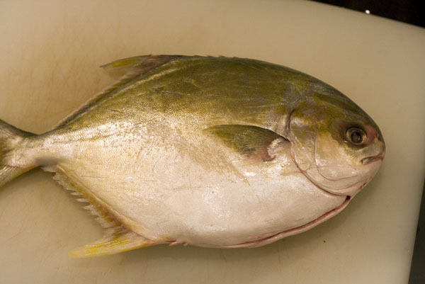 Real food dudes pan fried whole golden pompano for Picture of pompano fish
