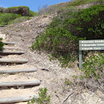 Track off Bournda Beach southern end (106624)