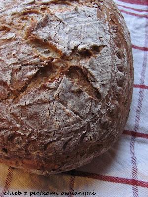 WBD 2011: chleb z płatkami owsianymi