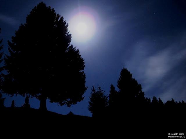 Piatra Craiului cu luna plina de la Plaiul Foii
