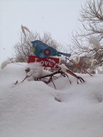 love winter snow bird