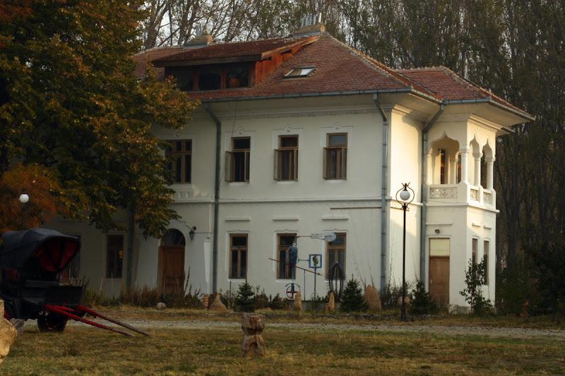 Mircea Dinescu Dunare Oltenia conac