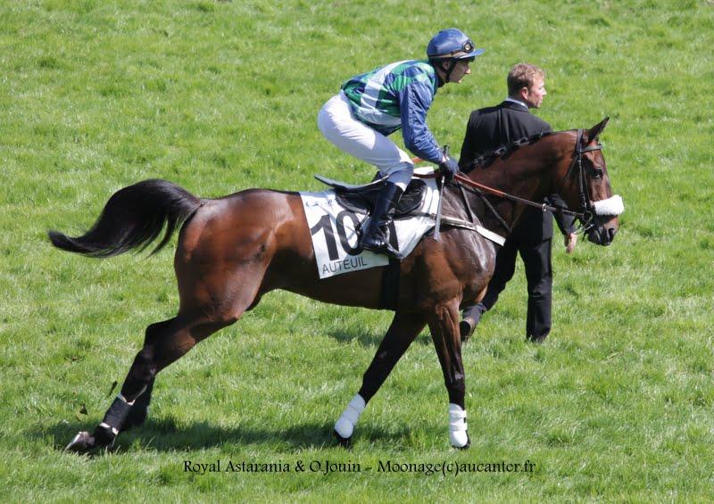 Photos Auteuil 17-05-2015 Journée du Grand Steeple IMG_0184