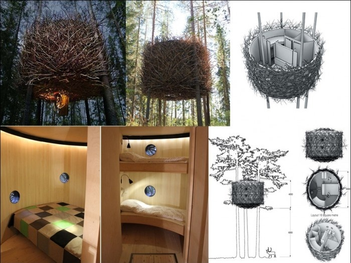 Bird Nest Tree-house Design